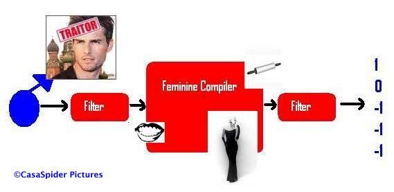 Sterk vereenvoudigd schema van het vrouwelijk input-/outputmechanisme